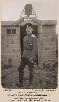 07-3._41 Большаков Анатолий Александрович.